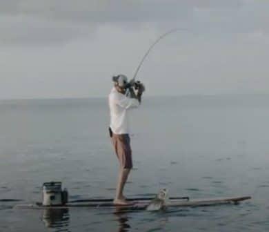 SUP Fishing – Cómo sacarle el máximo partido a tu tabla